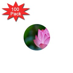 Red Pink Flower 1  Mini Button (100 pack)
