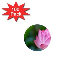 Red Pink Flower 1  Mini Magnet (100 pack)