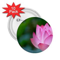 Red Pink Flower 2.25  Button (10 pack)