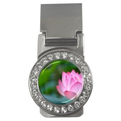 Red Pink Flower Money Clip (CZ)