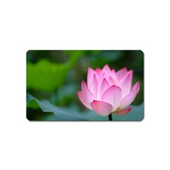 Red Pink Flower Magnet (Name Card)