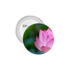 Pink Flowers 1.75  Button