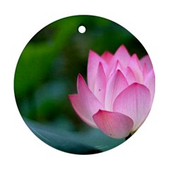 Pink Flowers Ornament (Round)