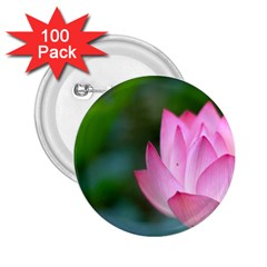 Pink Flowers 2 25  Button (100 Pack)