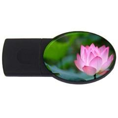 Pink Flowers USB Flash Drive Oval (2 GB)