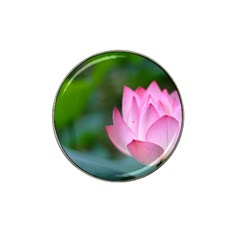 Pink Flowers Hat Clip Ball Marker (4 pack)