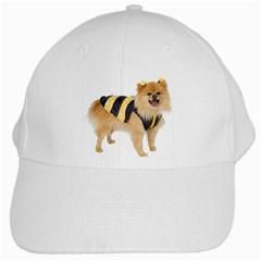 dog-photo White Cap