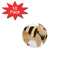dog-photo 1  Mini Magnet (10 pack)