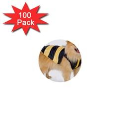 Dog Photo 1  Mini Button (100 Pack)