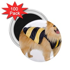 Dog Photo 2 25  Magnet (100 Pack)