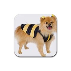 dog-photo Rubber Coaster (Square)