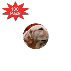Dog Photo Cute 1  Mini Button (100 Pack)