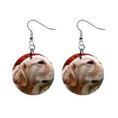 Dog Photo Cute 1  Button Earrings