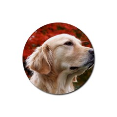 Dog Photo Cute Rubber Round Coaster (4 Pack)