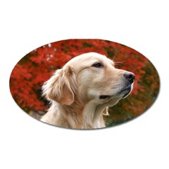 Dog Photo Cute Magnet (oval)