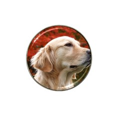 Dog Photo Cute Hat Clip Ball Marker (4 Pack)