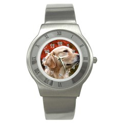 dog-photo cute Stainless Steel Watch