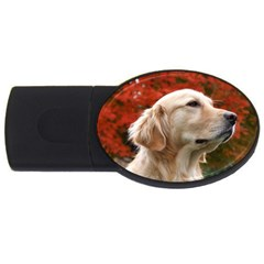 Dog Photo Cute Usb Flash Drive Oval (4 Gb)
