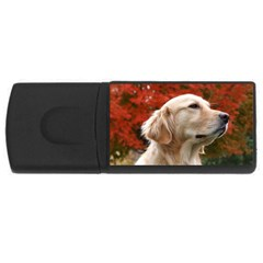 Dog Photo Cute Usb Flash Drive Rectangular (4 Gb)