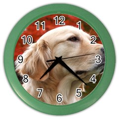 dog-photo cute Color Wall Clock