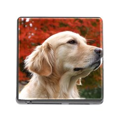 Dog Photo Cute Memory Card Reader With Storage (square)