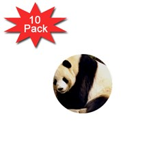 Giant Panda National Zoo 1  Mini Button (10 Pack)