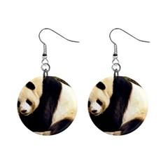 Giant Panda National Zoo 1  Button Earrings