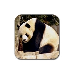 Giant Panda National Zoo Rubber Coaster (square)