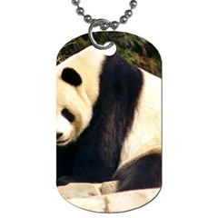 Giant Panda National Zoo Dog Tag (Two Sides)