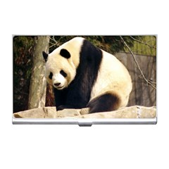 Giant Panda National Zoo Business Card Holder