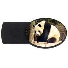 Giant Panda National Zoo USB Flash Drive Oval (1 GB)