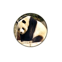 Giant Panda National Zoo Hat Clip Ball Marker (4 Pack)
