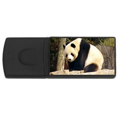 Giant Panda National Zoo USB Flash Drive Rectangular (4 GB)