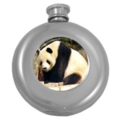 Giant Panda National Zoo Hip Flask (5 oz)