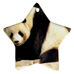 Giant Panda National Zoo Star Ornament (two Sides)