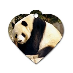 Giant Panda National Zoo Dog Tag Heart (two Sides)