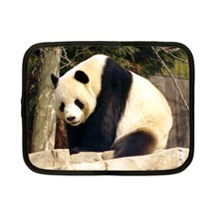 Giant Panda National Zoo Netbook Case (Small)