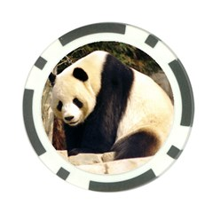 Giant Panda National Zoo Poker Chip Card Guard (10 Pack)