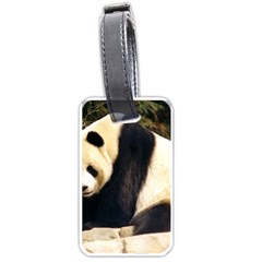 Giant Panda National Zoo Luggage Tag (one side)