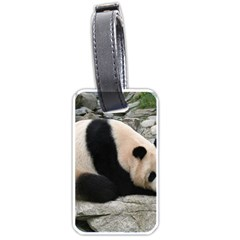 Giant Panda Water Luggage Tag (two Sides)