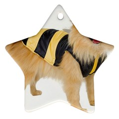 My-Dog-Photo Ornament (Star)