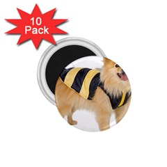 My Dog Photo 1 75  Magnet (10 Pack)