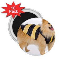 My-Dog-Photo 2.25  Magnet (10 pack)