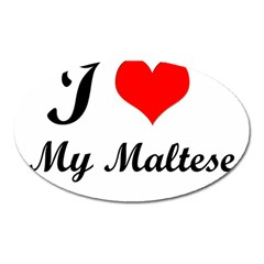 I Love My Maltese Magnet (Oval)