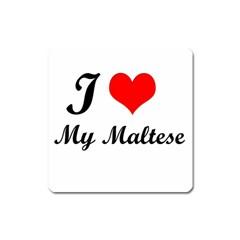 I Love My Maltese Magnet (square)