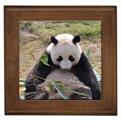 Big Panda Framed Tile