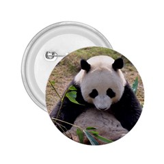Big Panda 2 25  Button
