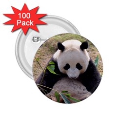 Big Panda 2 25  Button (100 Pack)