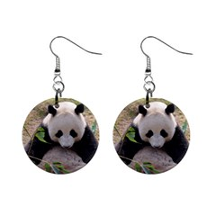 Big Panda 1  Button Earrings