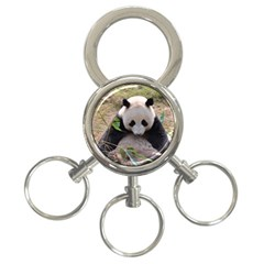 Big Panda 3 Ring Key Chain